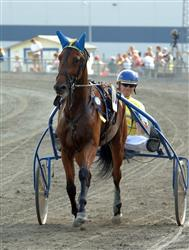 Swift Hornline vann V75-2 med Börje Bs Johansson. Foto: Thomas Blomqvist.